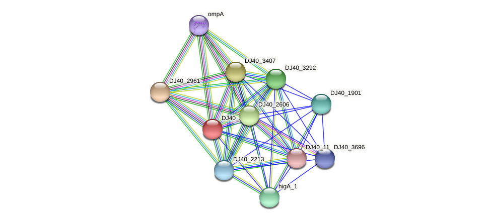 shlA protein (Yersinia pseudotuberculosis) - STRING interaction network