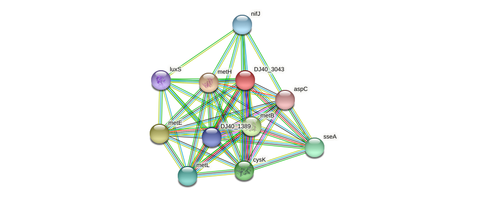 DJ40_3043 protein (Yersinia pseudotuberculosis) - STRING interaction network