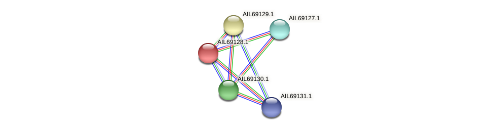 AIL69128.1 protein (Vibrio vulnificus) - STRING interaction network