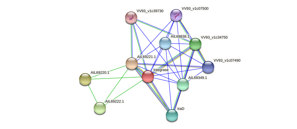 AIL69219.1 protein (Vibrio vulnificus) - STRING interaction network