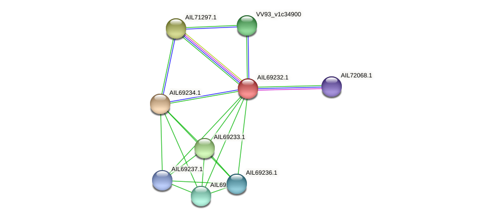 AIL69232.1 protein (Vibrio vulnificus) - STRING interaction network
