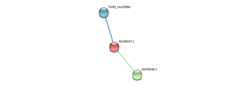 AIL69247.1 protein (Vibrio vulnificus) - STRING interaction network