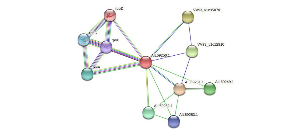 AIL69250.1 protein (Vibrio vulnificus) - STRING interaction network