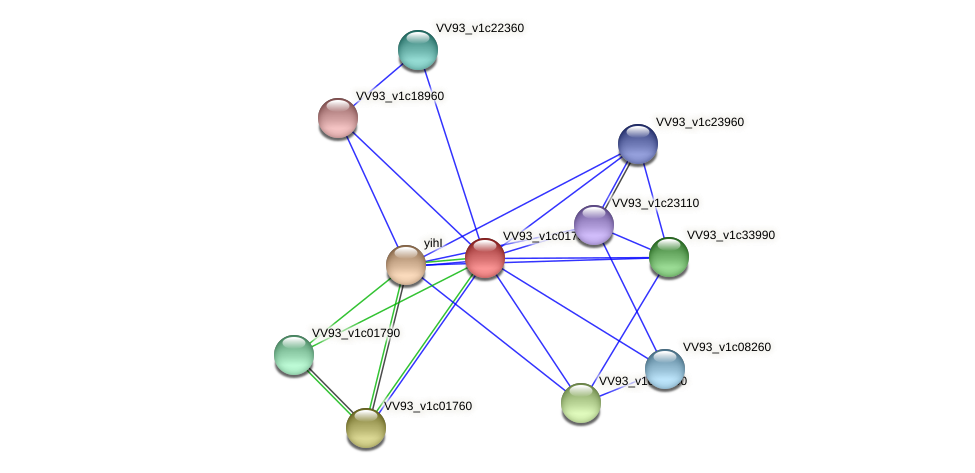 VV0192 protein (Vibrio vulnificus) - STRING interaction network