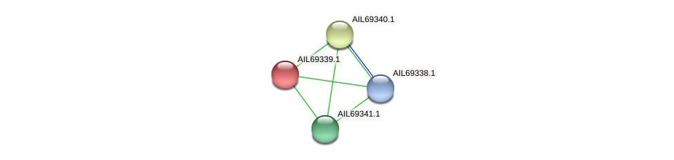 AIL69339.1 protein (Vibrio vulnificus) - STRING interaction network