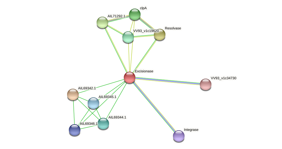 AIL69343.1 protein (Vibrio vulnificus) - STRING interaction network