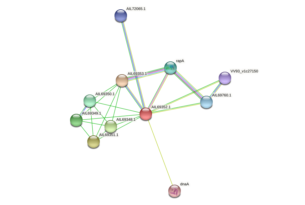 AIL69352.1 protein (Vibrio vulnificus) - STRING interaction network