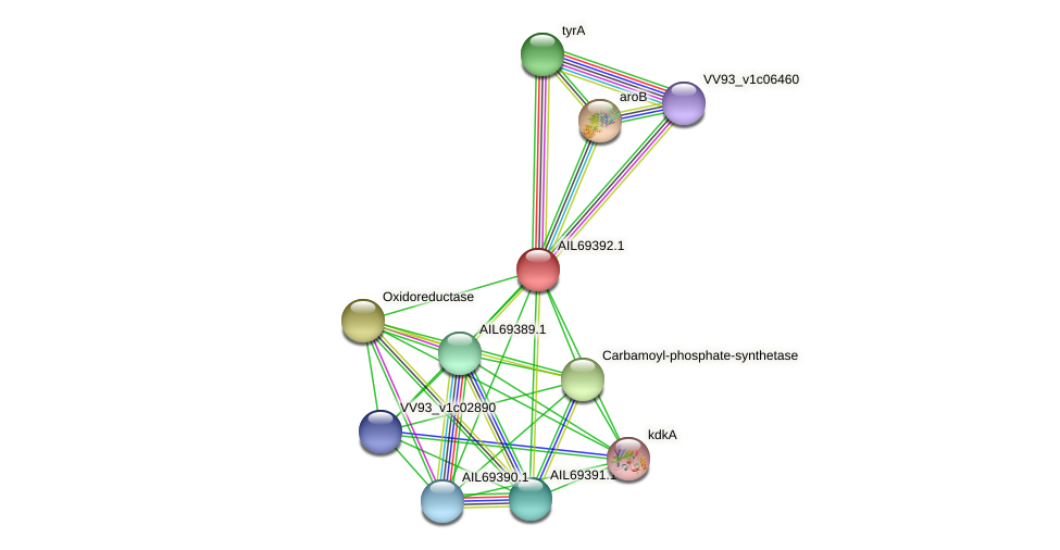 AIL69392.1 protein (Vibrio vulnificus) - STRING interaction network