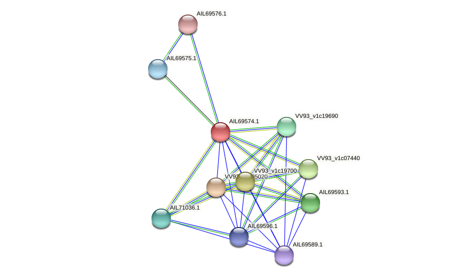 AIL69574.1 protein (Vibrio vulnificus) - STRING interaction network