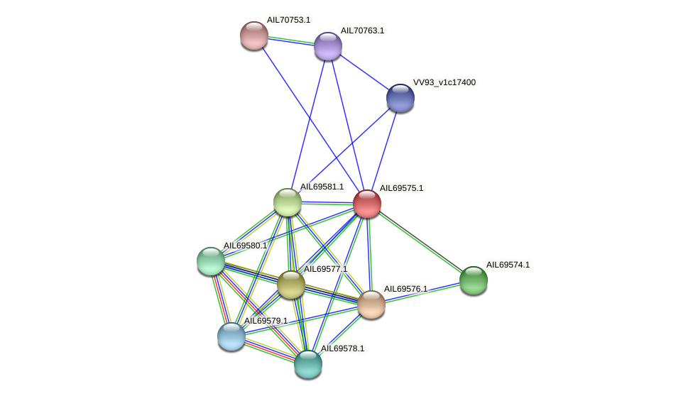 AIL69575.1 protein (Vibrio vulnificus) - STRING interaction network