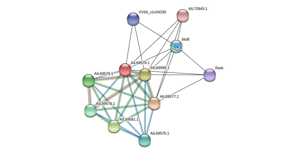 AIL69576.1 protein (Vibrio vulnificus) - STRING interaction network