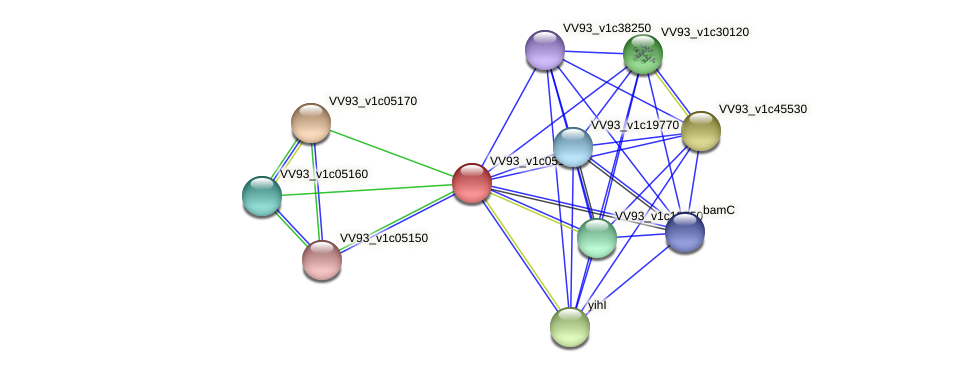 VV0577 protein (Vibrio vulnificus) - STRING interaction network