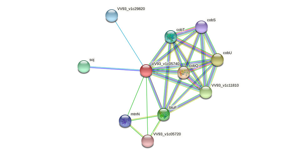 VV0634 protein (Vibrio vulnificus) - STRING interaction network