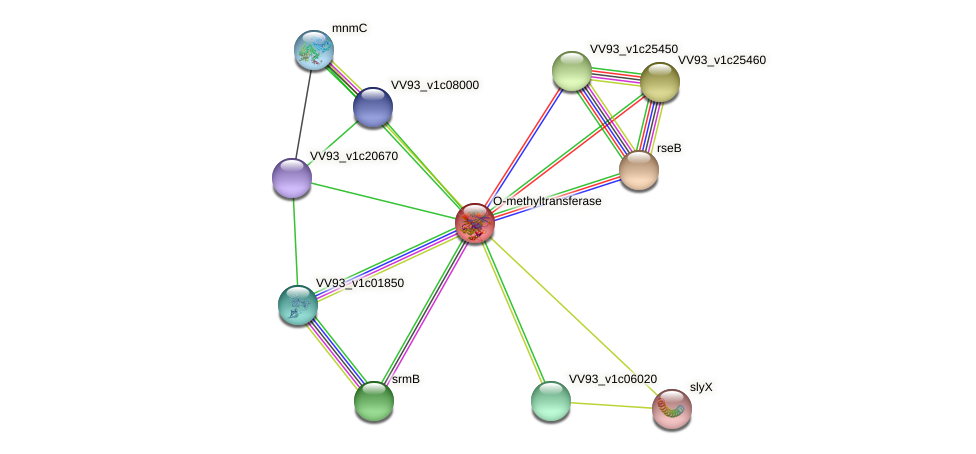 VV0662 protein (Vibrio vulnificus) - STRING interaction network