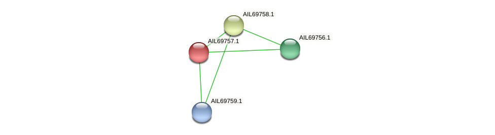 AIL69757.1 protein (Vibrio vulnificus) - STRING interaction network