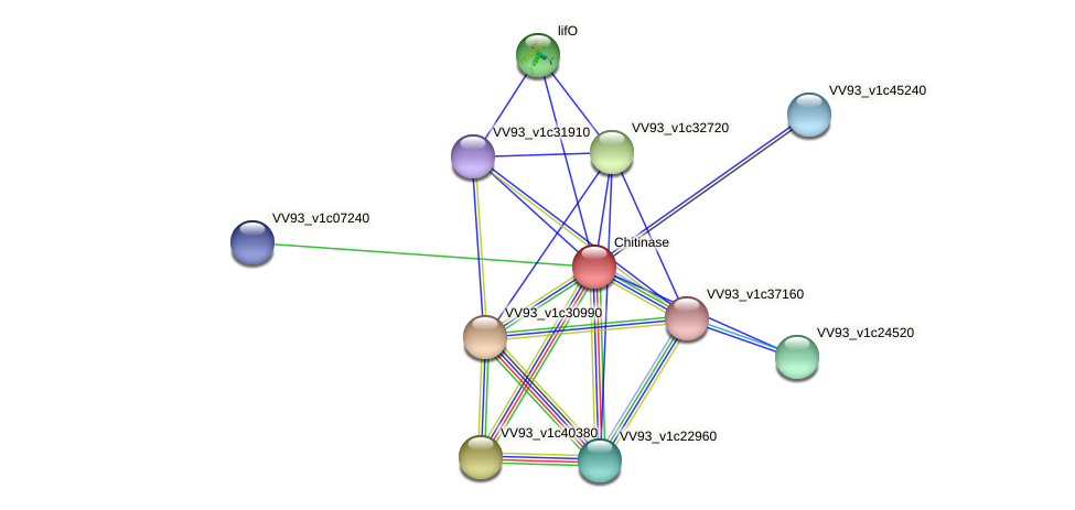 VV0777 protein (Vibrio vulnificus) - STRING interaction network