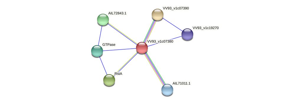 VV0797 protein (Vibrio vulnificus) - STRING interaction network