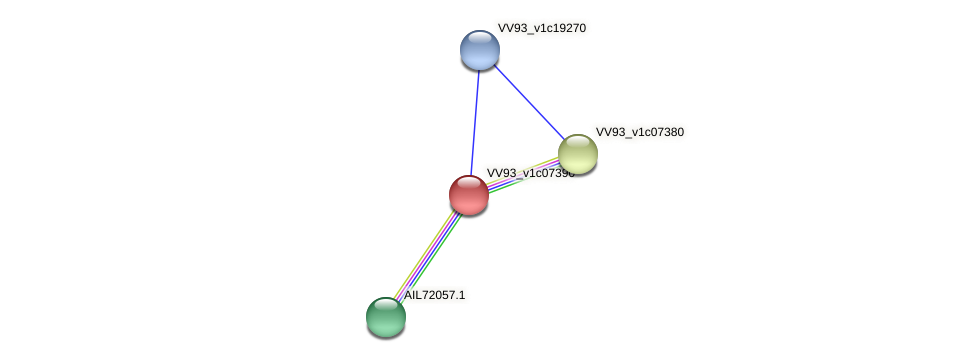 VV0798 protein (Vibrio vulnificus) - STRING interaction network