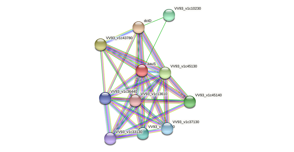 aauS protein (Vibrio vulnificus) - STRING interaction network