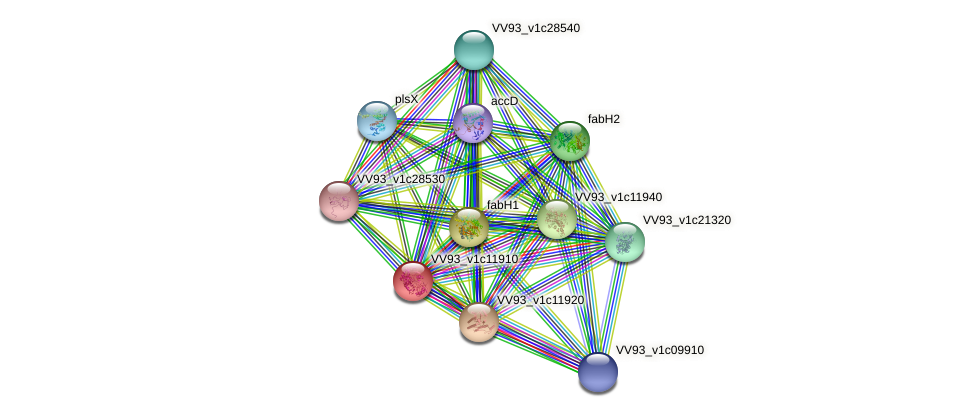 VV1274 protein (Vibrio vulnificus) - STRING interaction network