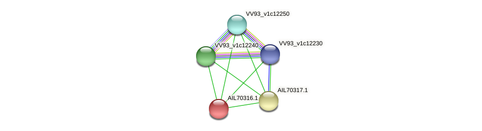 AIL70316.1 protein (Vibrio vulnificus) - STRING interaction network