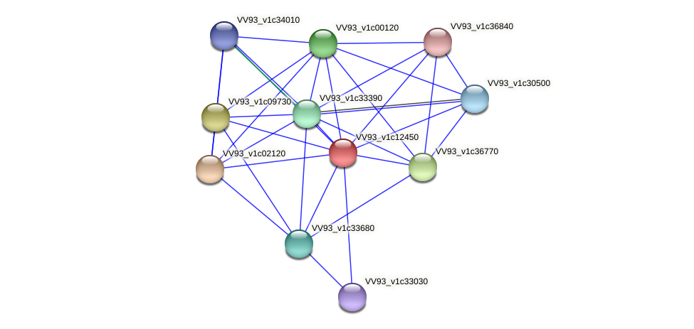 VV1331 protein (Vibrio vulnificus) - STRING interaction network