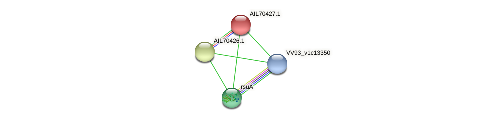 AIL70427.1 protein (Vibrio vulnificus) - STRING interaction network