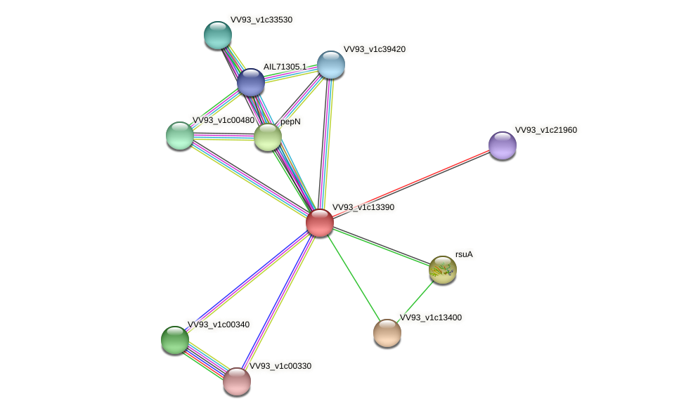 VV1427 protein (Vibrio vulnificus) - STRING interaction network