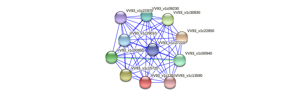 VV1443 protein (Vibrio vulnificus) - STRING interaction network