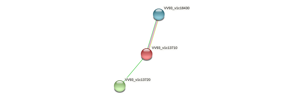 VV1462 protein (Vibrio vulnificus) - STRING interaction network