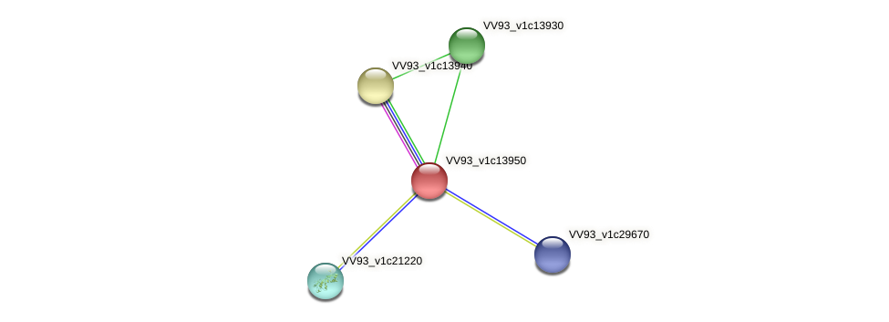 VV1485 protein (Vibrio vulnificus) - STRING interaction network