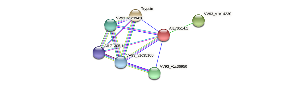 AIL70514.1 protein (Vibrio vulnificus) - STRING interaction network