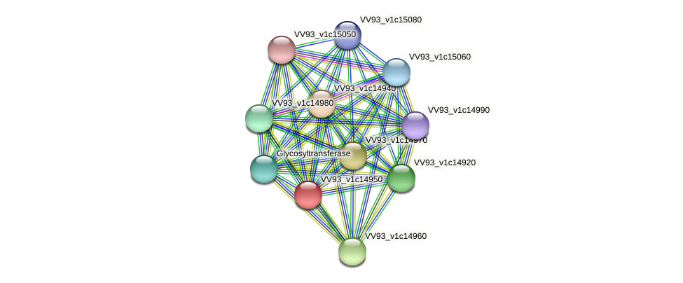 VV1620 protein (Vibrio vulnificus) - STRING interaction network
