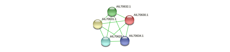 AIL70630.1 protein (Vibrio vulnificus) - STRING interaction network