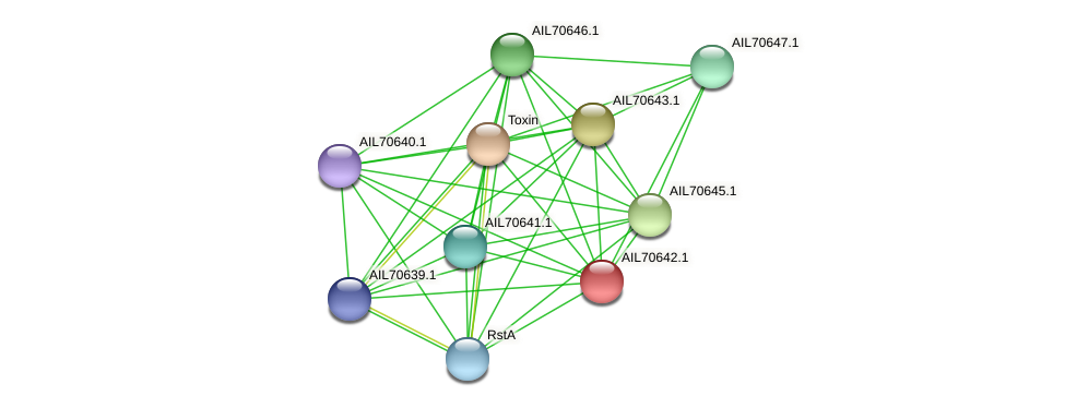 AIL70642.1 protein (Vibrio vulnificus) - STRING interaction network