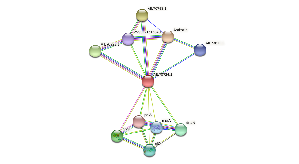 AIL70726.1 protein (Vibrio vulnificus) - STRING interaction network