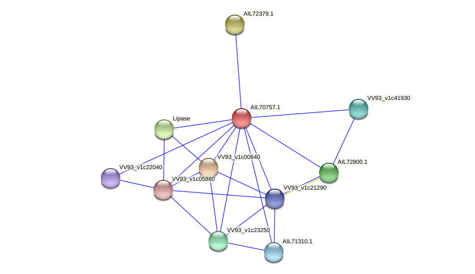 AIL70757.1 protein (Vibrio vulnificus) - STRING interaction network