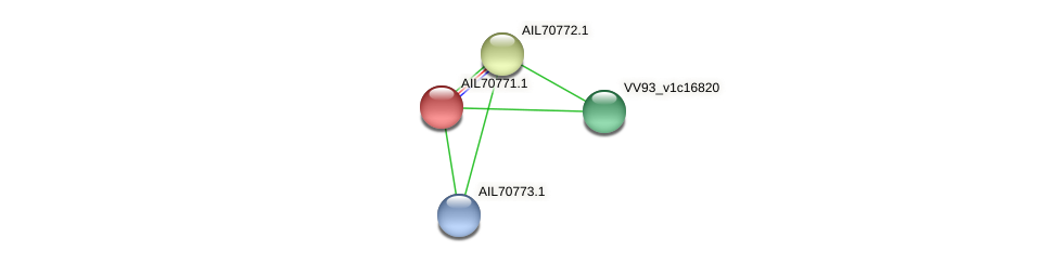 AIL70771.1 protein (Vibrio vulnificus) - STRING interaction network