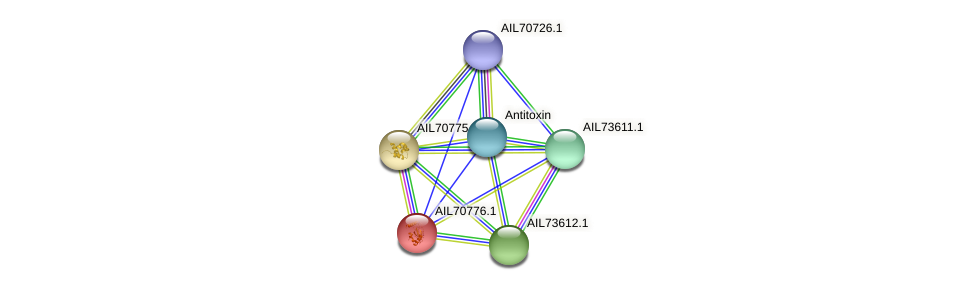 AIL70776.1 protein (Vibrio vulnificus) - STRING interaction network