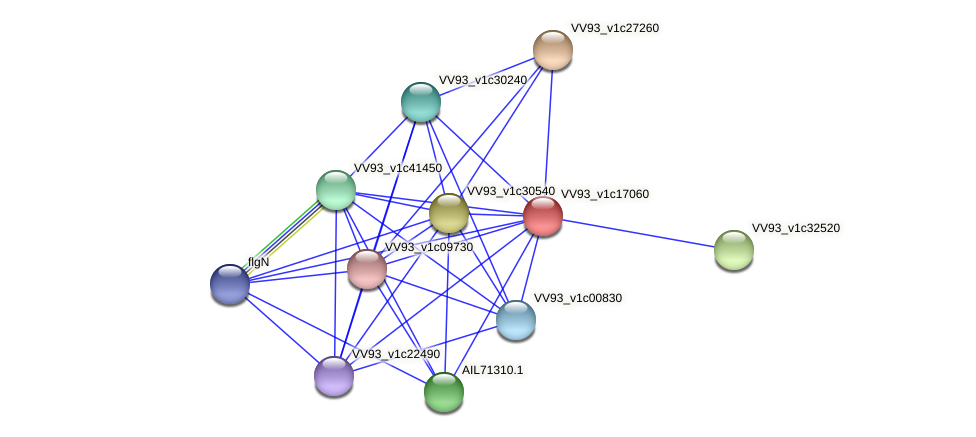 VV1946 protein (Vibrio vulnificus) - STRING interaction network