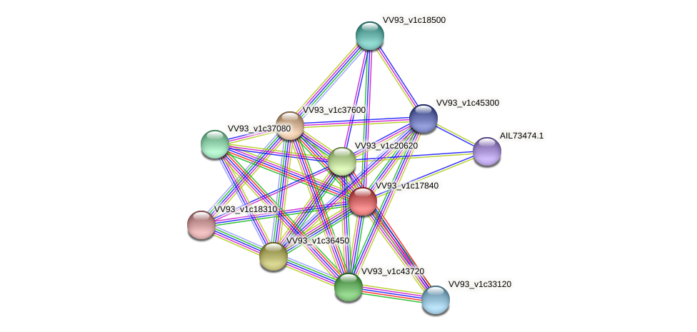 VV2022 protein (Vibrio vulnificus) - STRING interaction network