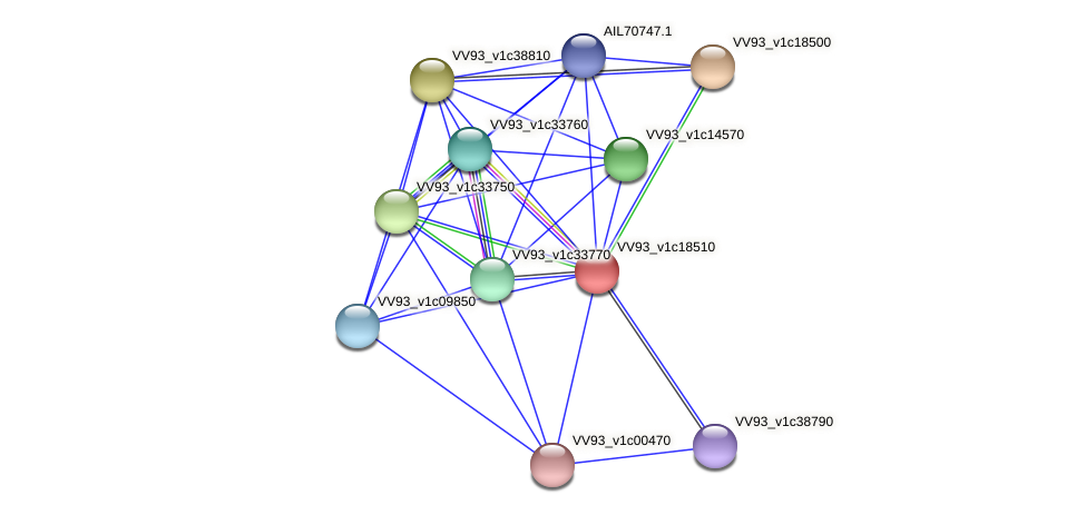 VV2087 protein (Vibrio vulnificus) - STRING interaction network