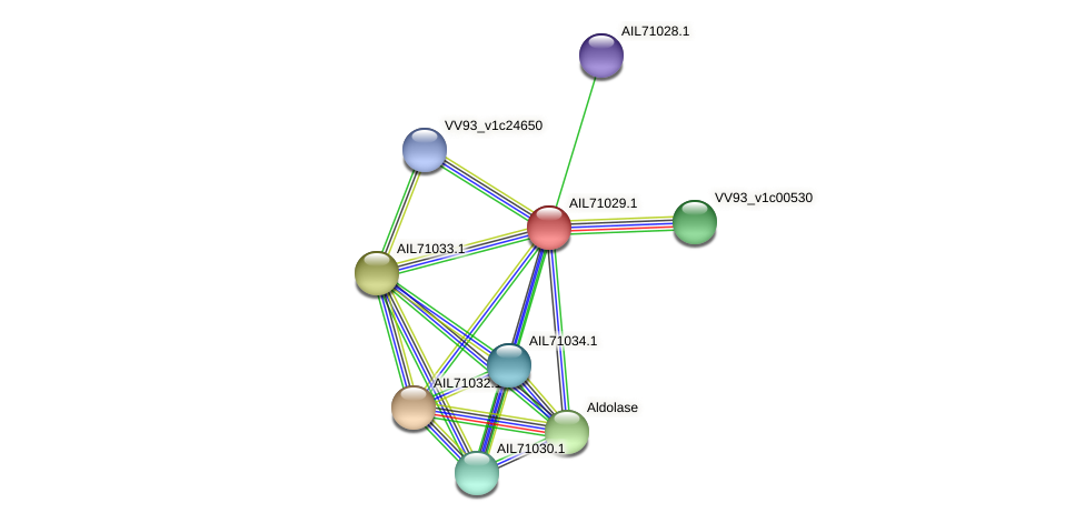 AIL71029.1 protein (Vibrio vulnificus) - STRING interaction network