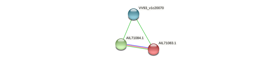 AIL71083.1 protein (Vibrio vulnificus) - STRING interaction network