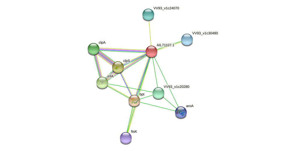 AIL71107.1 protein (Vibrio vulnificus) - STRING interaction network