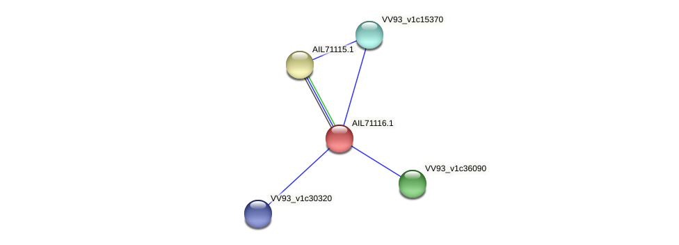 AIL71116.1 protein (Vibrio vulnificus) - STRING interaction network