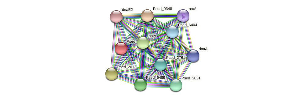 Psed_0002 protein (Pseudonocardia dioxanivorans) - STRING interaction network
