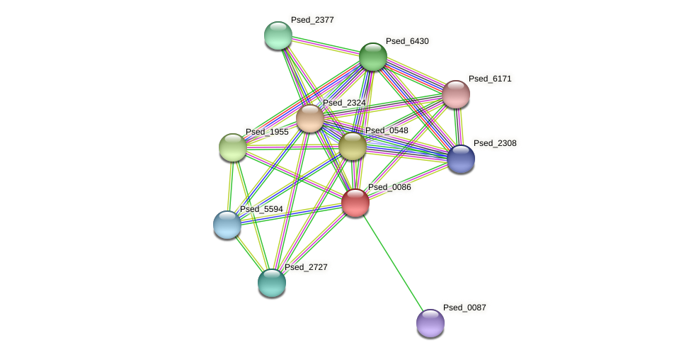 Psed_0086 protein (Pseudonocardia dioxanivorans) - STRING interaction network