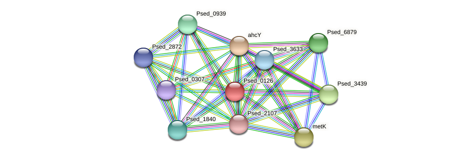 Psed_0126 protein (Pseudonocardia dioxanivorans) - STRING interaction network