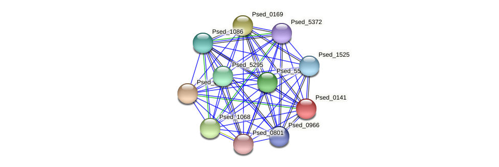 Psed_0141 protein (Pseudonocardia dioxanivorans) - STRING interaction network